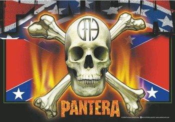 flaga PANTERA - FLAG & SKULL