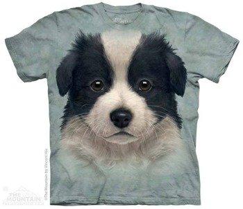 koszulka THE MOUNTAIN - BORDER COLLIE PUPPY, barwiona