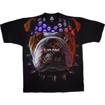 koszulka TUFF DOG