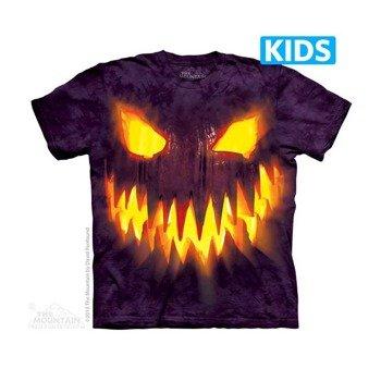 koszulka dziecięca THE MOUNTAIN - BIG FACE JACK, barwiona