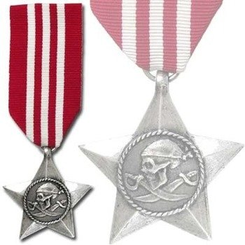 medal I.G.A. - THE IGNOBLE GALLANTRY AWARD
