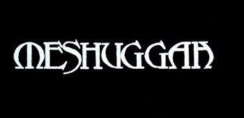 naszywka MESHUGGAH - LOGO