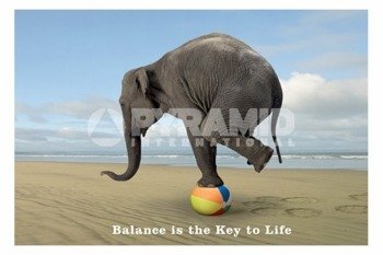plakat BALANCE IS THE KEY TO LIFE - ELEPHANT ON BALL