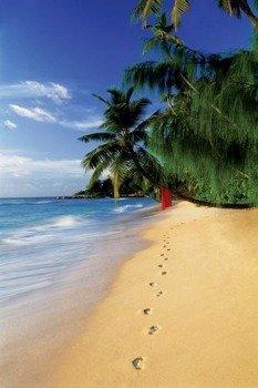 plakat BEACH - FOOTSTEPS