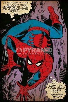plakat SPIDER-MAN - BREATHING SPELL