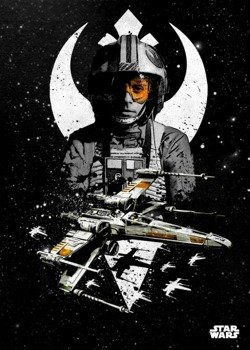 plakat z metalu STAR WARS - WING