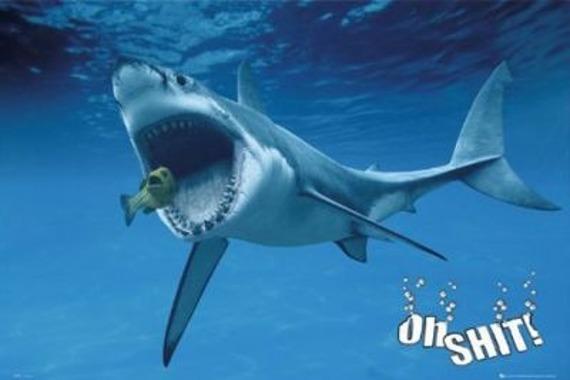 plakat OH SHIT - SHARK